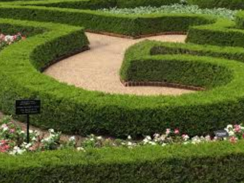 What You Should Know About Landscaping Companies Before You Hire Them